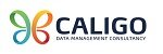 CALIGO Data Management Consultancy